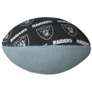 Oakland Raiders NFL Grip Sack